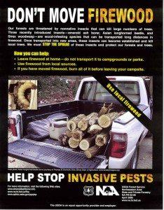 Firewood Information